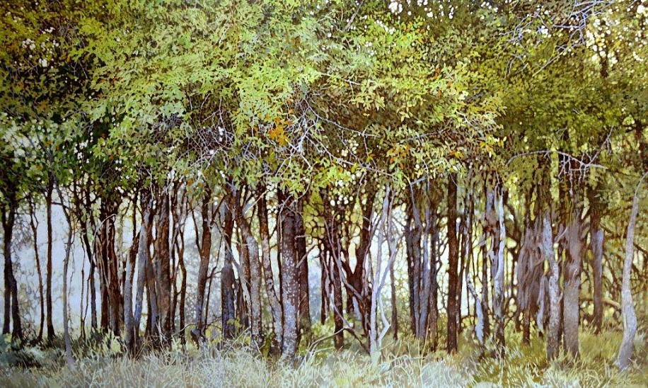 LEIGH VOIGT, TAMBOETI GROVE OIL ON CANVAS